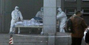 Japon bilim adamlarından korona virüsü araştırması