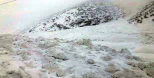 Van-Çatak kara yoluna peş peşe çığ düşüyor