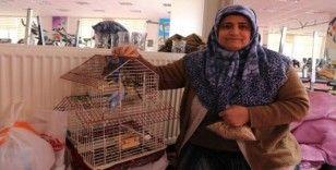 Depremde evindeki her şeyi bıraktı, kuşlarını kurtardı