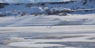Kılıçkaya baraj gölü kısmen buz tuttu