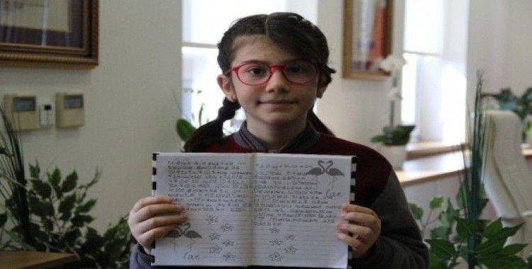 İlkokul öğrencisi matematikte dünya 1.'si oldu