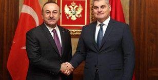Çavuşoğlu, Karadağ Meclis Başkanı Brajoviç ile görüştü