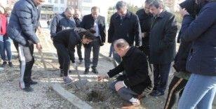 Mersin'de okul bahçelerine 400 hünnap fidanı dikildi