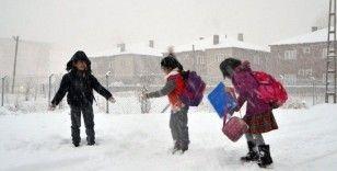 Erzincan genelinde kar tatili