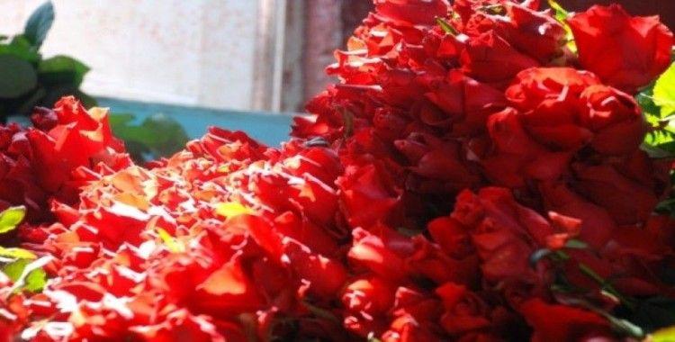 Çiçekler, 14 Şubat için toplandı