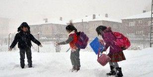 Van'da okullar 2 gün tatil edildi