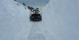 Adıyaman'da kar nedeniyle 484 yerleşim yerine ulaşılamıyor