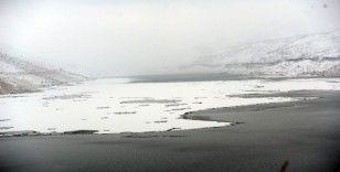 Yüzen adalar buz kesti