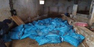 Büyükşehir zabıta, 22 ton kaçak kömür ele geçirdi