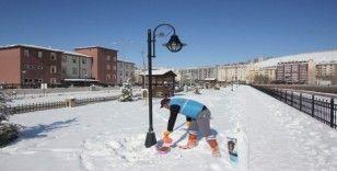 Bayburt Belediyesi sokak hayvanlarını unutmuyor