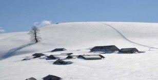 Kardüz Yaylası'nda kar kalınlığı 2.5 metreye ulaştı