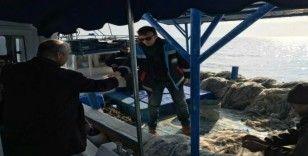 Tarım ve Orman Müdürlüğü, denizde kaçak avlanmaya geçit vermiyor