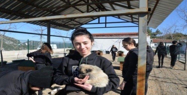Lise öğrencilerinden hayvan barınağına ziyaret