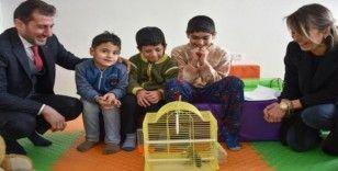 Öğrenciler muhabbet kuşu ile rehabilite olacak