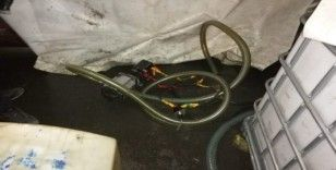 Park halindeki araçların deposundaki akaryakıtlarını çalan şahıs tutuklandı
