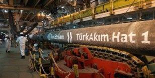 Türk Akım'dan Avrupa'ya ocakta 506,3 milyon metreküp gaz taşındı