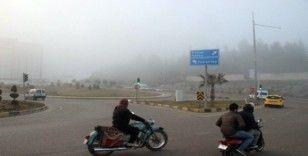 Kilis'te yoğun sis