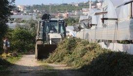 Erdemli'de tarım arazileri temizlendi