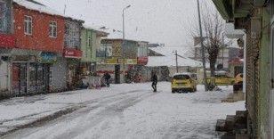 Kar, Karlıova'yı tekrar beyaza bürüdü
