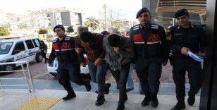Alanya'da 10 ton muz hırsızlığında 3 şüpheli serbest bırakıldı