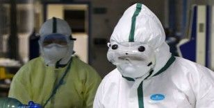 Irak'ta koronavirüsü vakası sayısı 5'e yükseldi