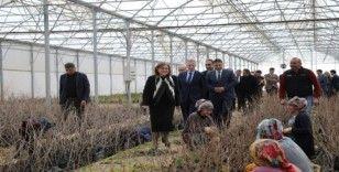 Büyükşehir, Gaziantep'in yöresel tatlarını koruyacak