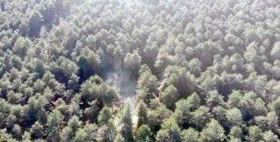 Aydos Ormanı'nda yangının çıktığı alan havadan görüntülendi