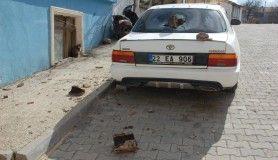 Tekirdağ'da şiddetli fırtına: otomobil hasar gördü