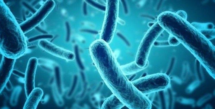 Korkulacak yeni hastalık 'Hastalık X'