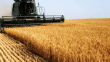 Tarım-ÜFE yıllık yüzde 10,22, aylık yüzde 2,56 arttı