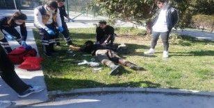Beylikdüzü'nde parkta bıçaklı kavga: 1 yaralı