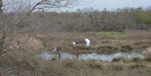 Tokat'ta arazide insan iskeleti bulundu