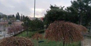 Kocaeli'de akşam saatlerinde kar yağışı başladı