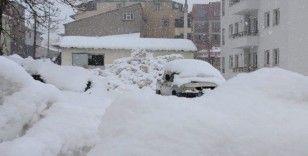 Bingöl'de kar yağışı, 21 köy yolu kapandı