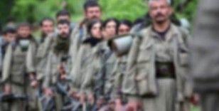 Jandarmanın ikna ettiği 1 terörist daha teslim oldu