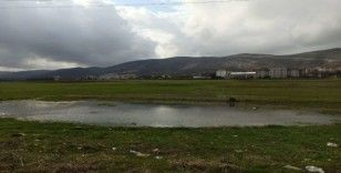Gercüş'te aşırı yağış ekili alanları vurdu
