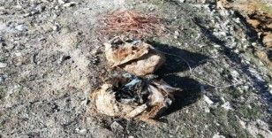 Köy yoluna tuzaklanmış 60 kilogram patlayıcı ele geçirildi
