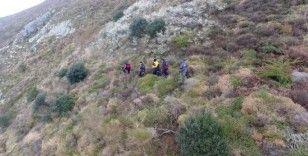 Dağda mahsur kalan keçi için çalışma başlatıldı