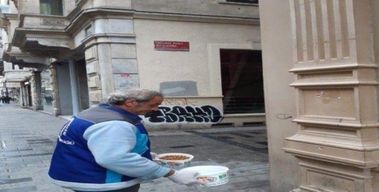 Beyoğlu'nda sokak hayvanları unutulmadı