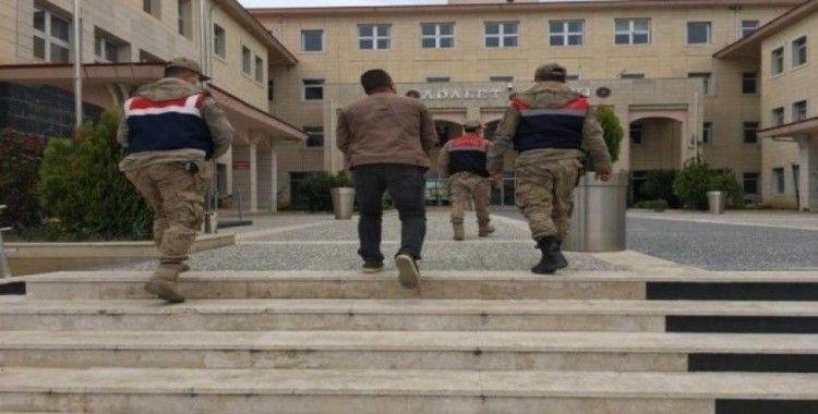Siirt'te terör suçundan aranan şahıs yakalandı