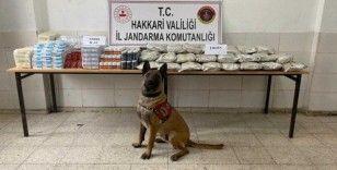 Yüksekova'da yüklü miktarda uyuşturucu madde ve tıbbi ilaç ele geçirildi