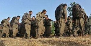 Terör örgütü PKK/YPG'den Suriye'de kara propaganda