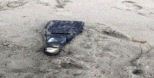 Kuşadası'nda paket içerisinde ceset parçası bulundu