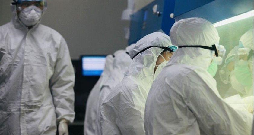 Rus virüs bilimci: Kovid-19 hastalığının seyri farklılık gösterebilir