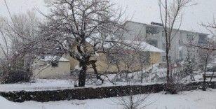 Karlıova'da Nisan'ın ilk gününde kar yağışı