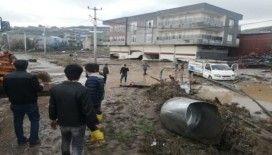 Diyarbakır'ı sağanak vurdu, onlarca büyükbaş hayvan telef oldu