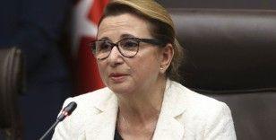 Ticaret Bakanı Ruhsar Pekcan: 'İhracatta mart ayında bir gerileme bekliyoruz'