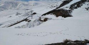 Nisan ayında kar kalınlığının 5 metreyi bulduğu yolda çalışma
