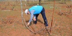 Evinden çıkamayan çiftçinin 3 dönümlük bağı budandı