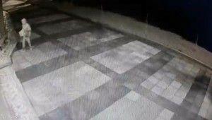 Cem Evi'nden bağış kutusu çalan hırsız kameraya yakalandı